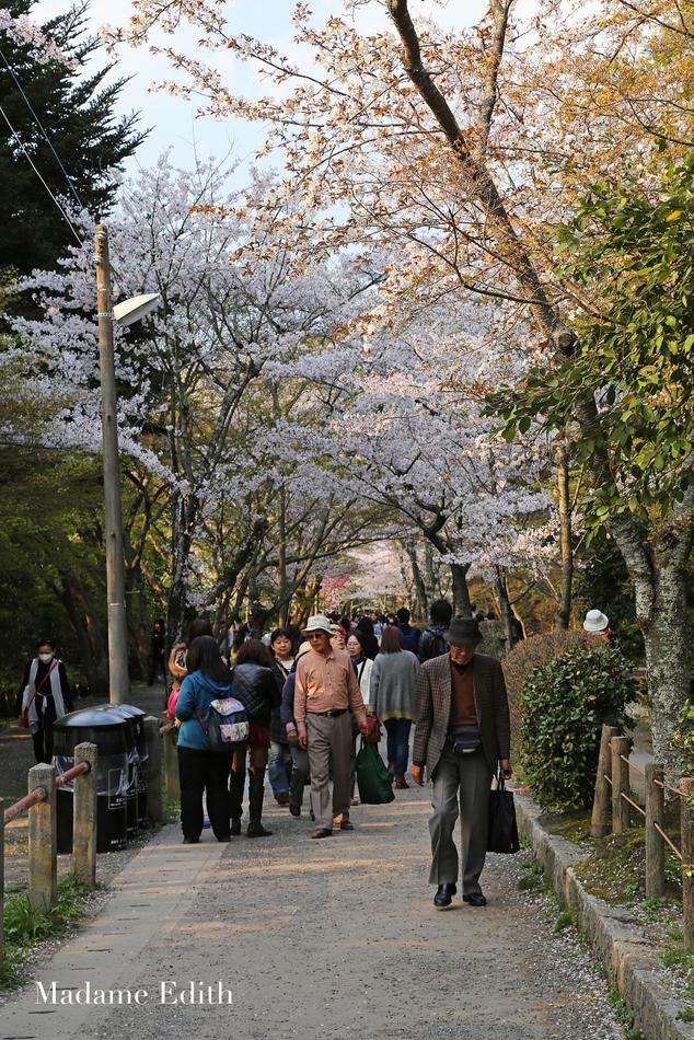 Spacer Filozofa Kioto