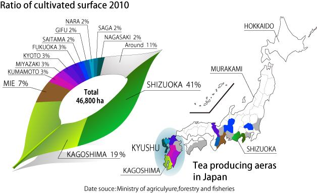 regiony uprawy herbaty w Japonii