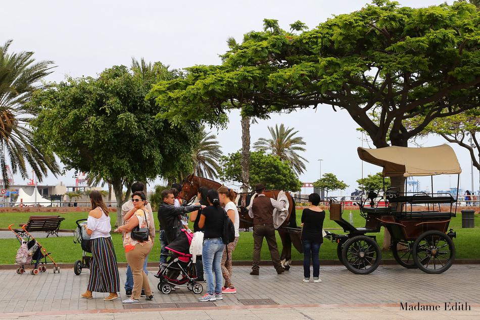 Las Palmas de Gran Canaria Catalina
