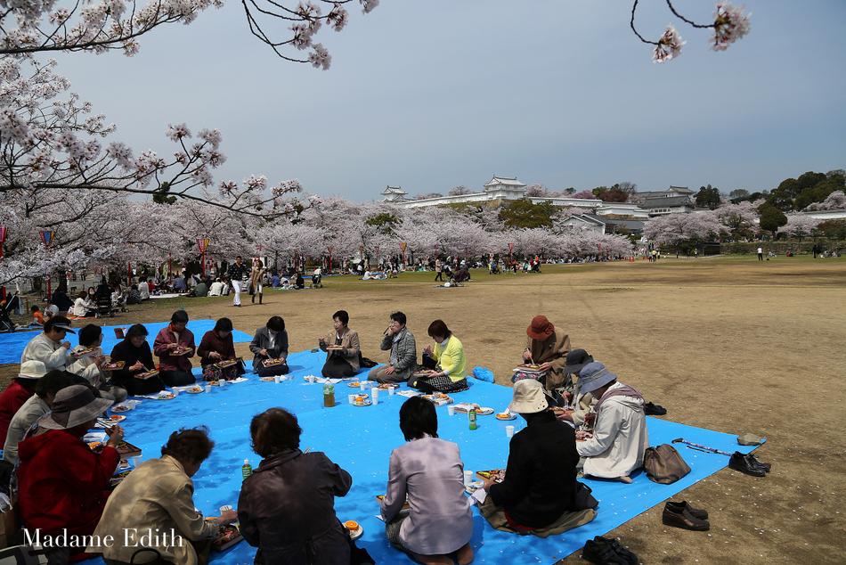 hanami Himeji