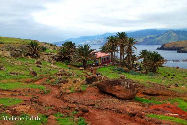 Ponta de Sao Lourenco 31
