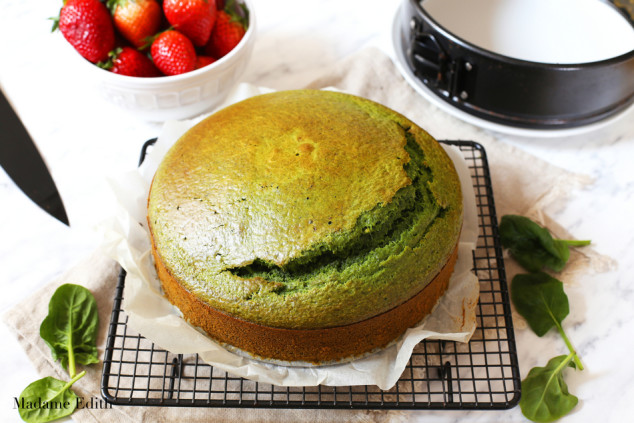 ciasto leśny mech 13