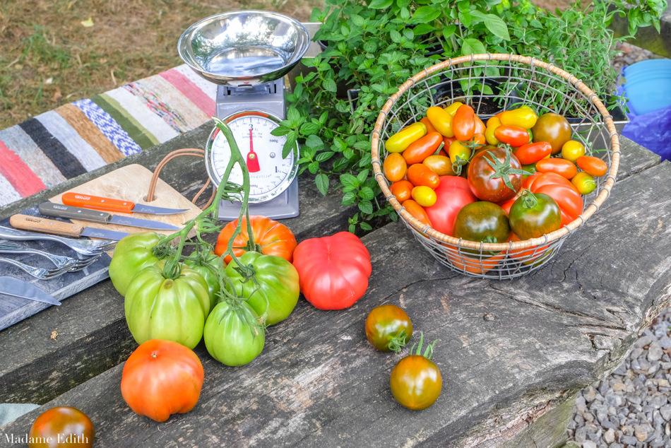 przepisy z pomidorami